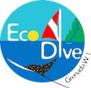 Eco Dive - Pure Diving in Grenada