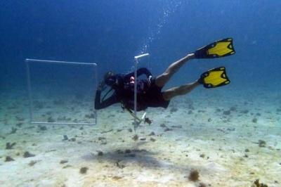Peak Performance Buoyancy training with Eco Dive