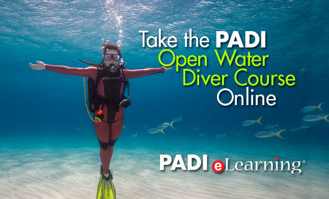 PADI Open Water E-Learning Diver Banner